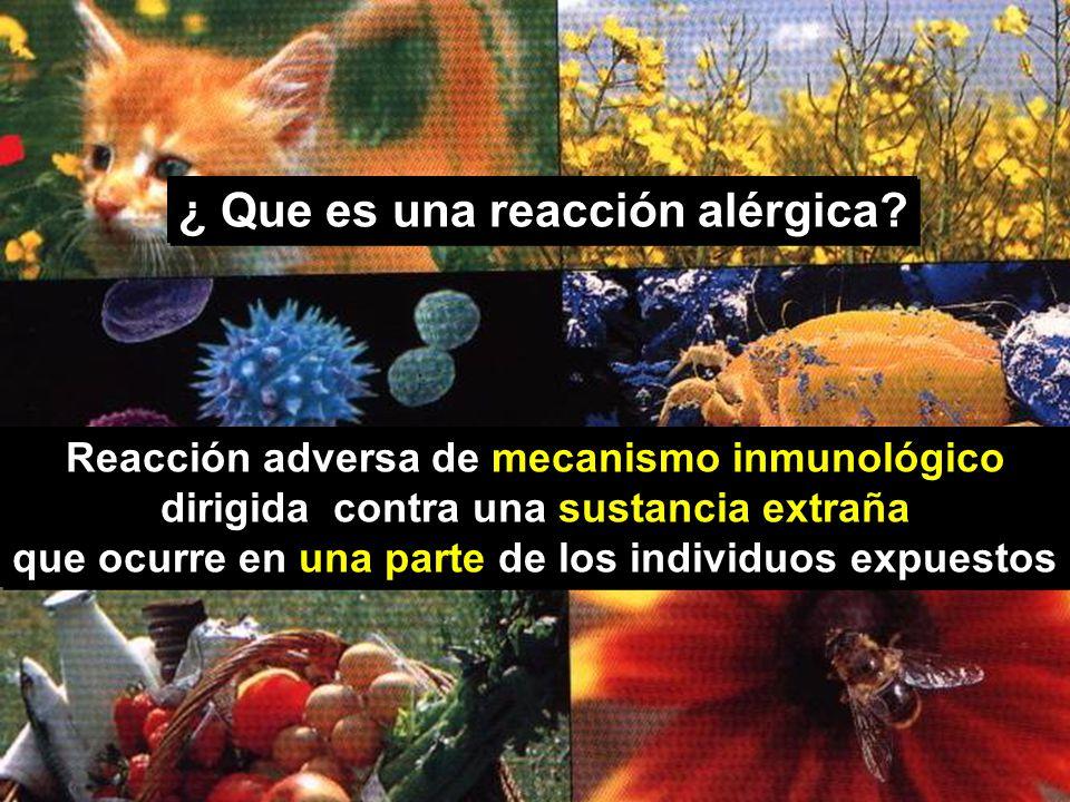 ¿ Que es una reacción alérgica