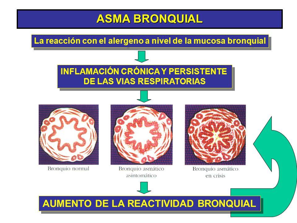 ASMA BRONQUIAL AUMENTO DE LA REACTIVIDAD BRONQUIAL