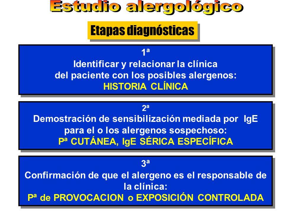 Etapas diagnósticas Estudio alergológico 1ª