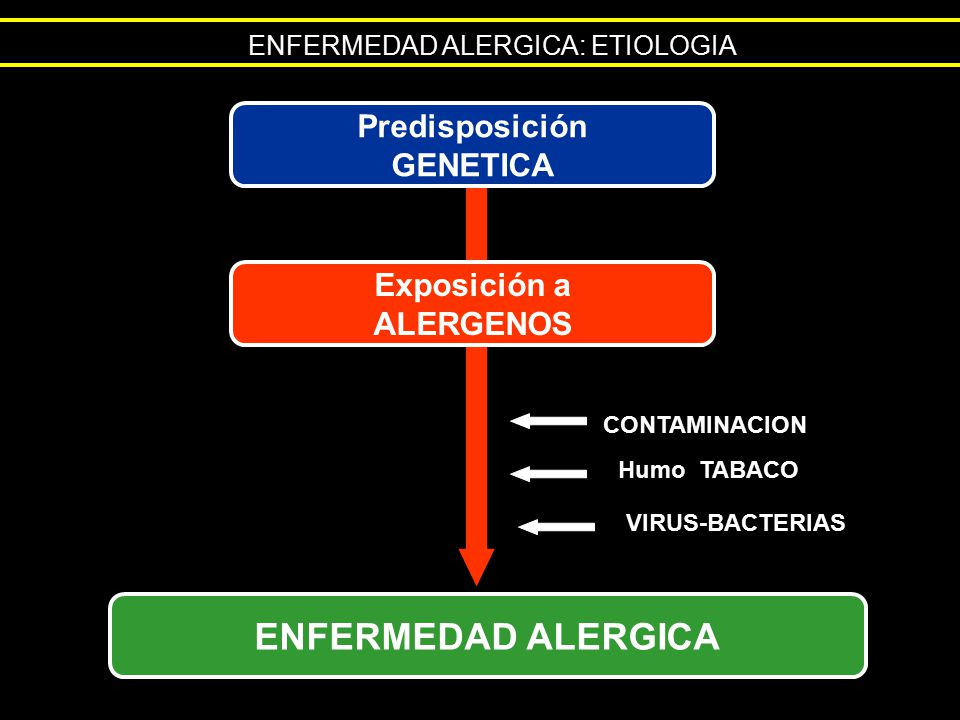 ENFERMEDAD ALERGICA Predisposición GENETICA Exposición a ALERGENOS