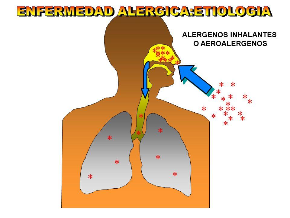 ENFERMEDAD ALERGICA:ETIOLOGIA