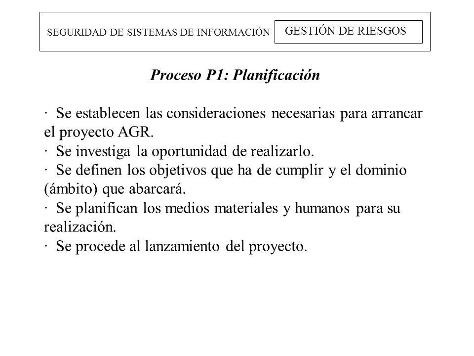 Proceso P1: Planificación