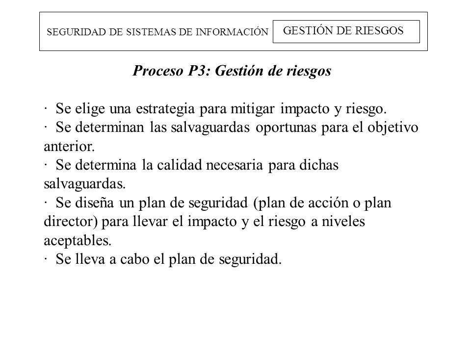 Proceso P3: Gestión de riesgos