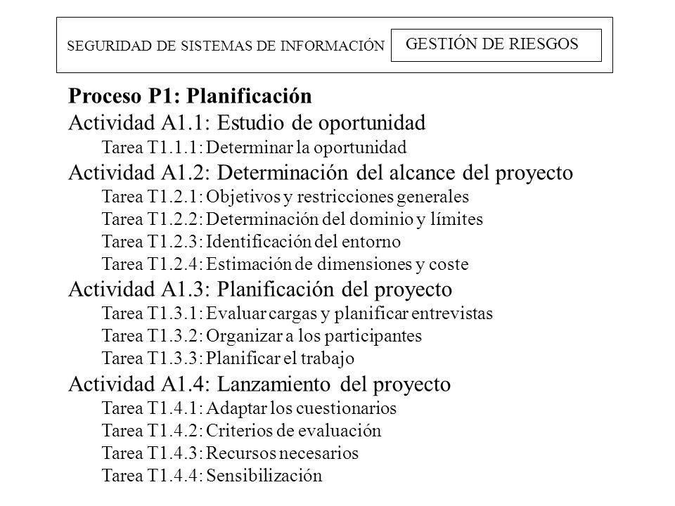 Proceso P1: Planificación Actividad A1.1: Estudio de oportunidad