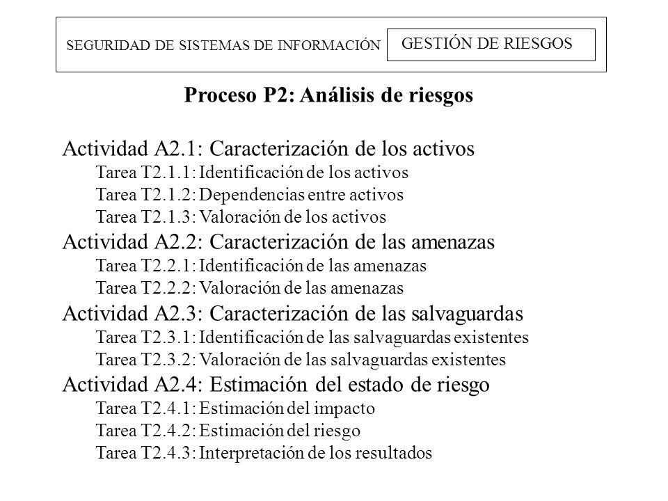 Proceso P2: Análisis de riesgos