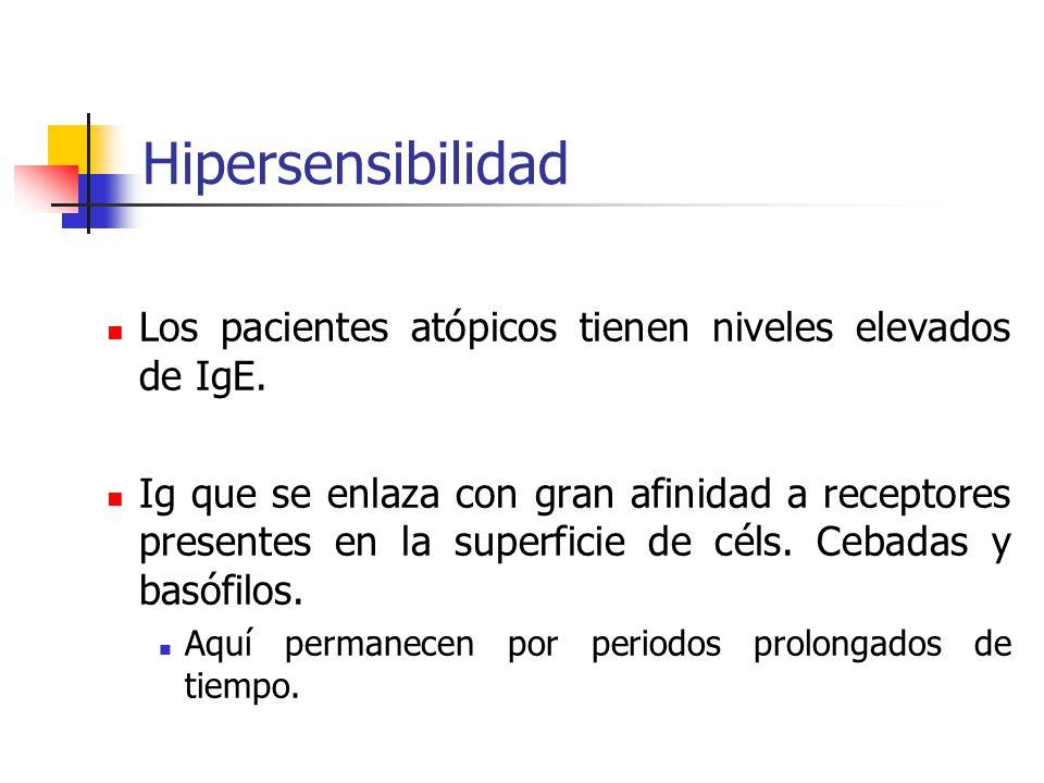 Hipersensibilidad Los pacientes atópicos tienen niveles elevados de IgE.