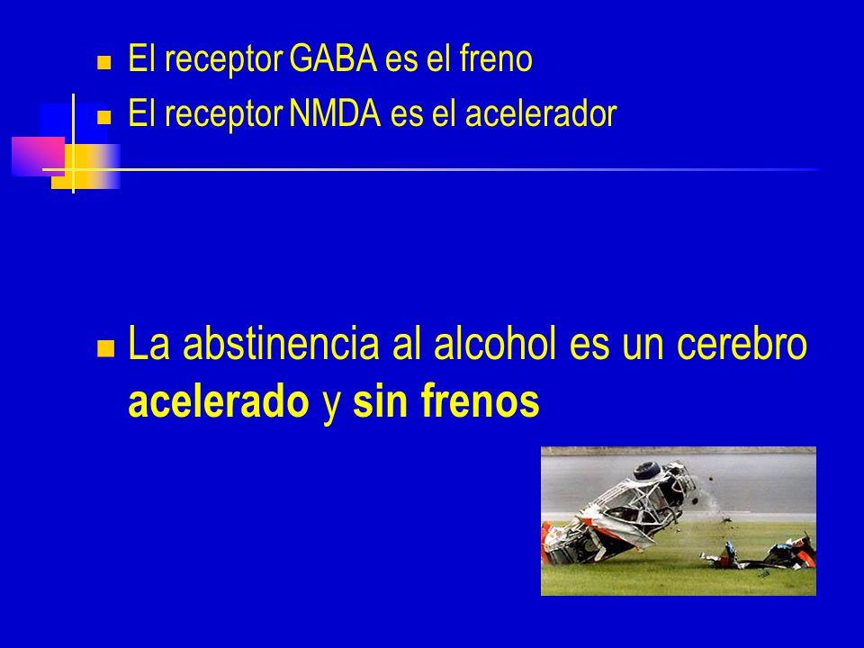 La abstinencia al alcohol es un cerebro acelerado y sin frenos