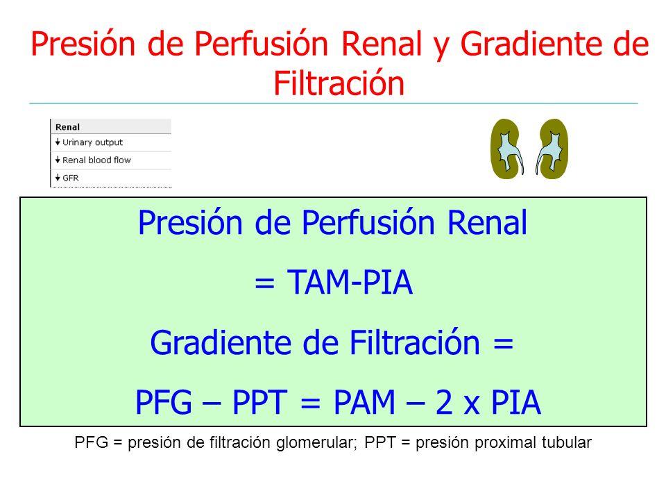 Presión de Perfusión Renal y Gradiente de Filtración