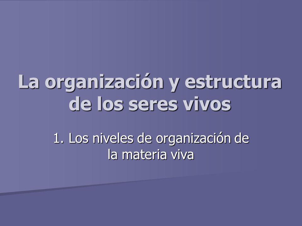 La organizaci n y estructura de los seres vivos ppt video online descargar - Estructuras libros vivos ...