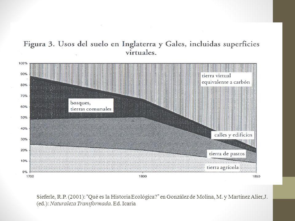 Sieferle, R. P. (2001): Qué es la Historia Ecológica