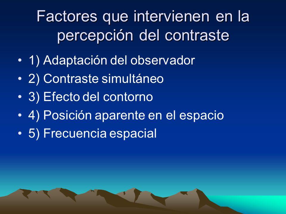 Factores que intervienen en la percepción del contraste