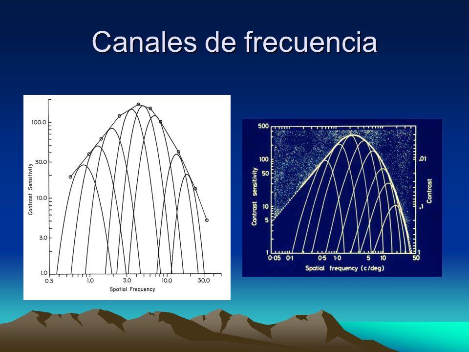 Canales de frecuencia
