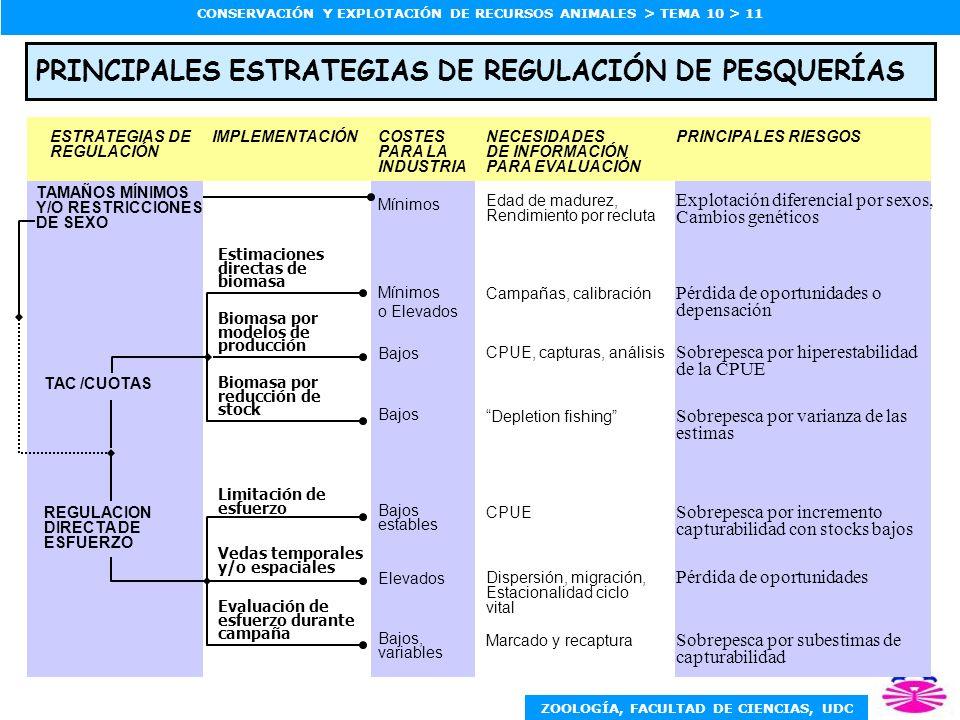 PRINCIPALES ESTRATEGIAS DE REGULACIÓN DE PESQUERÍAS