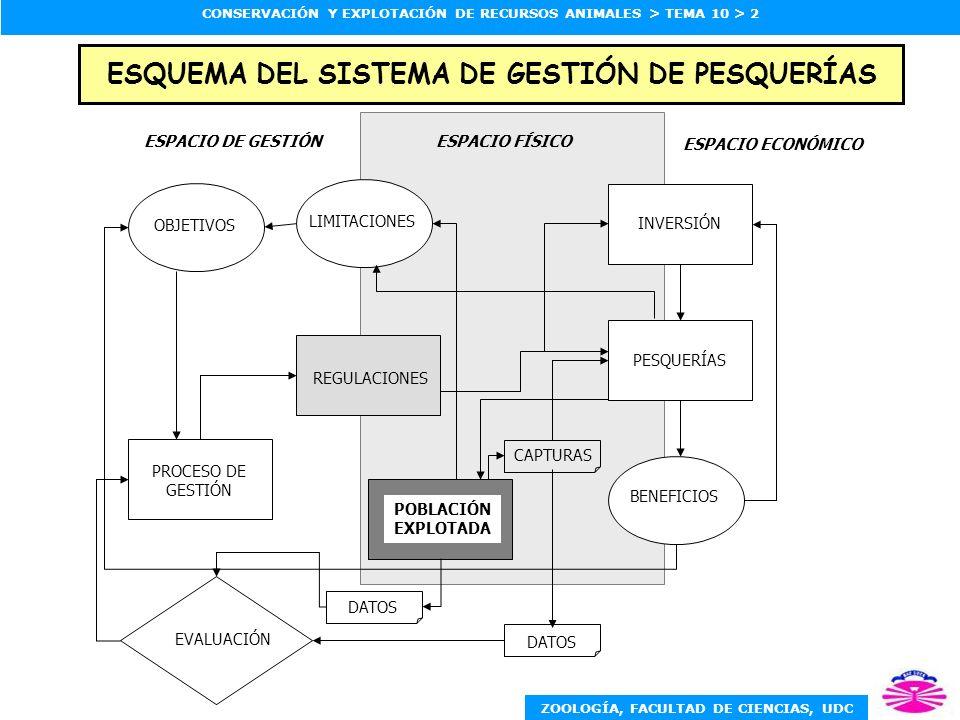 ESQUEMA DEL SISTEMA DE GESTIÓN DE PESQUERÍAS