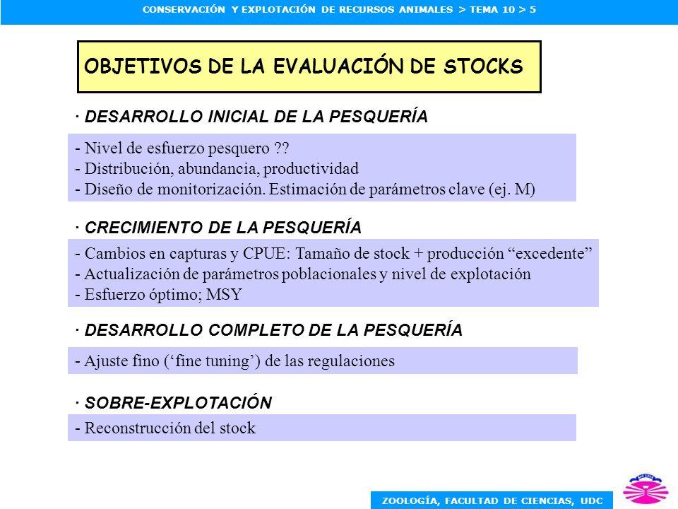 OBJETIVOS DE LA EVALUACIÓN DE STOCKS