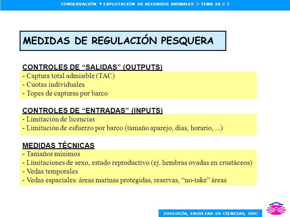 MEDIDAS DE REGULACIÓN PESQUERA