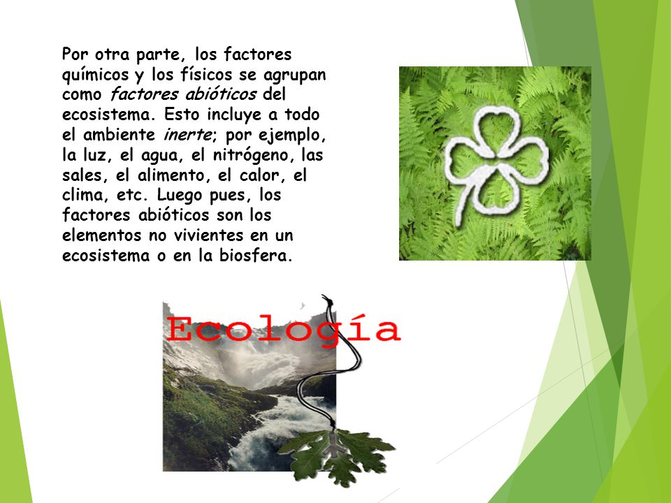 Por otra parte, los factores químicos y los físicos se agrupan como factores abióticos del ecosistema.