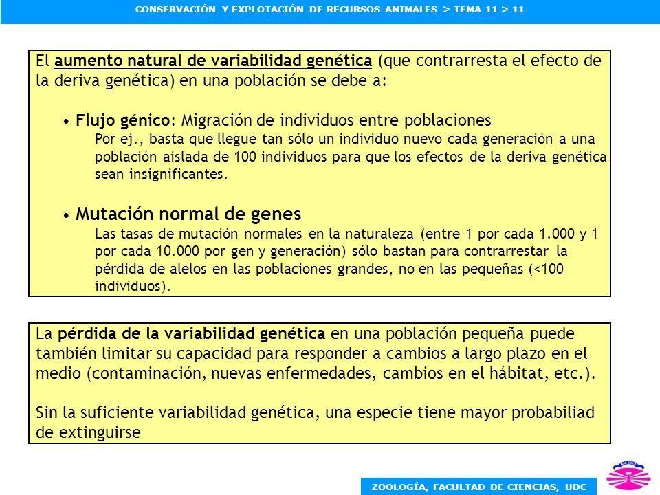 Flujo génico: Migración de individuos entre poblaciones
