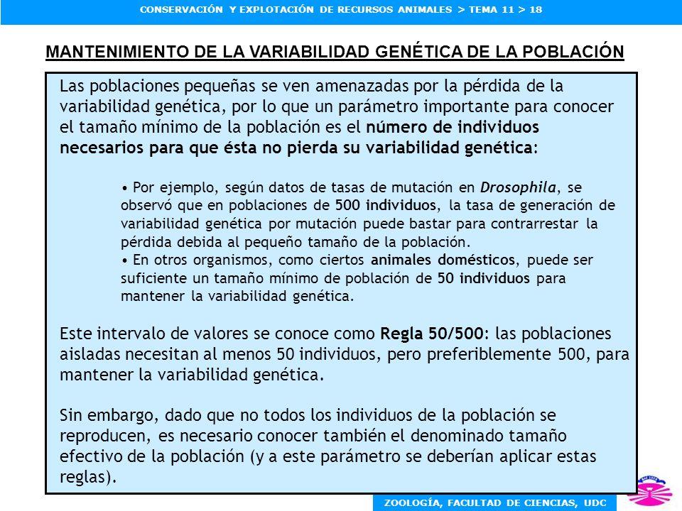 MANTENIMIENTO DE LA VARIABILIDAD GENÉTICA DE LA POBLACIÓN