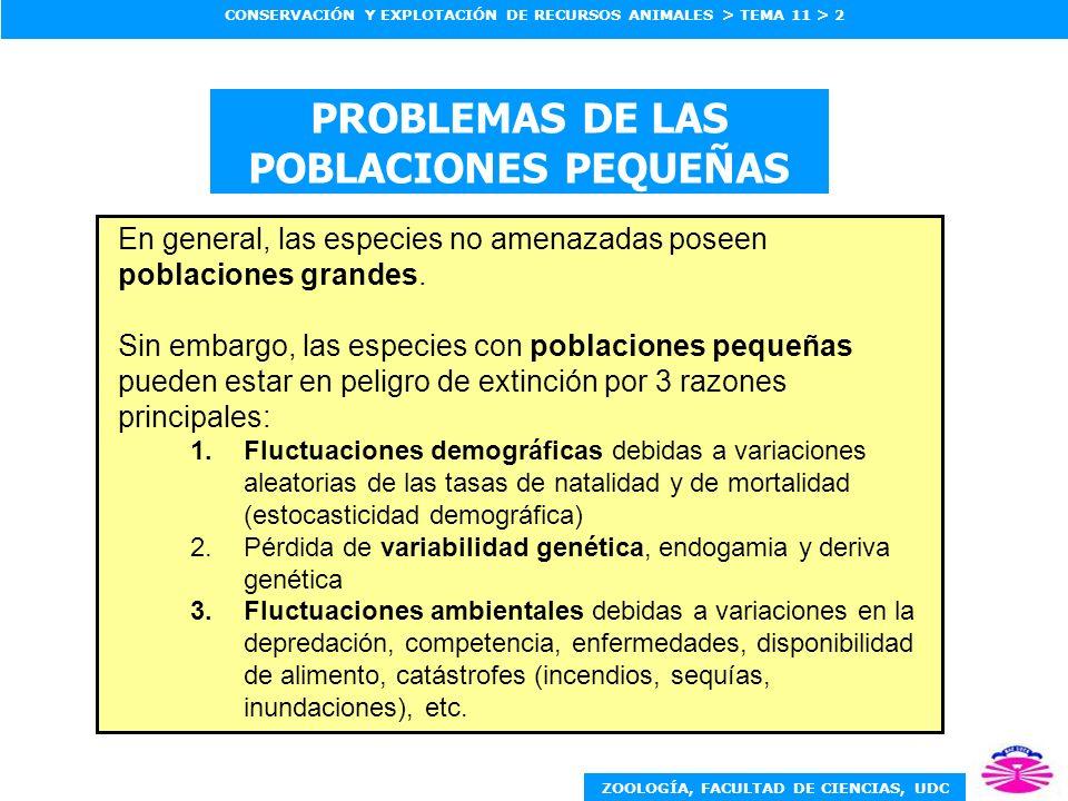 PROBLEMAS DE LAS POBLACIONES PEQUEÑAS