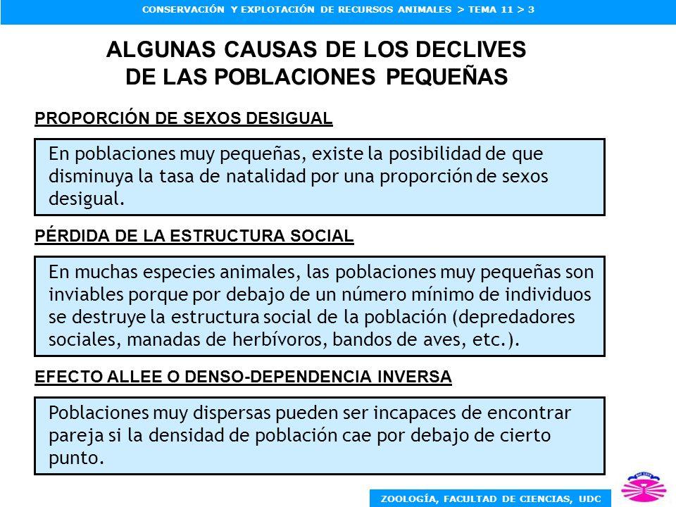 ALGUNAS CAUSAS DE LOS DECLIVES DE LAS POBLACIONES PEQUEÑAS