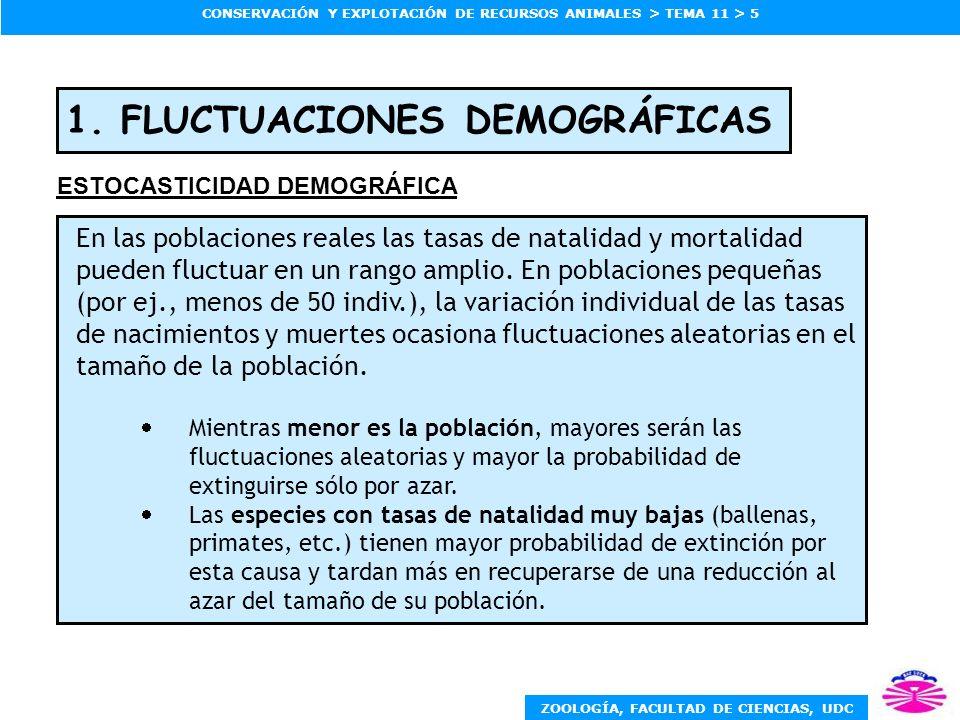1. FLUCTUACIONES DEMOGRÁFICAS