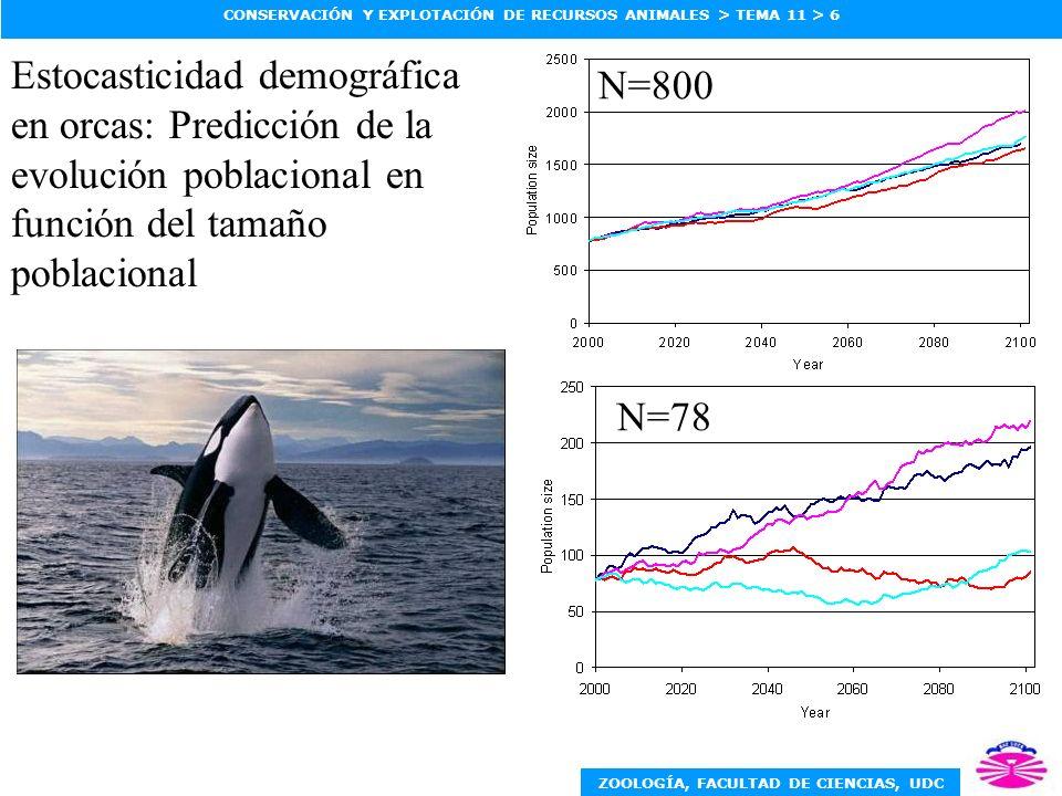 N=800 Estocasticidad demográfica en orcas: Predicción de la evolución poblacional en función del tamaño poblacional.