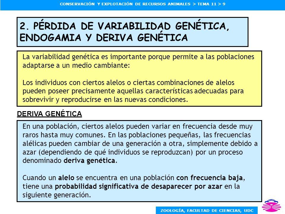 2. PÉRDIDA DE VARIABILIDAD GENÉTICA, ENDOGAMIA Y DERIVA GENÉTICA