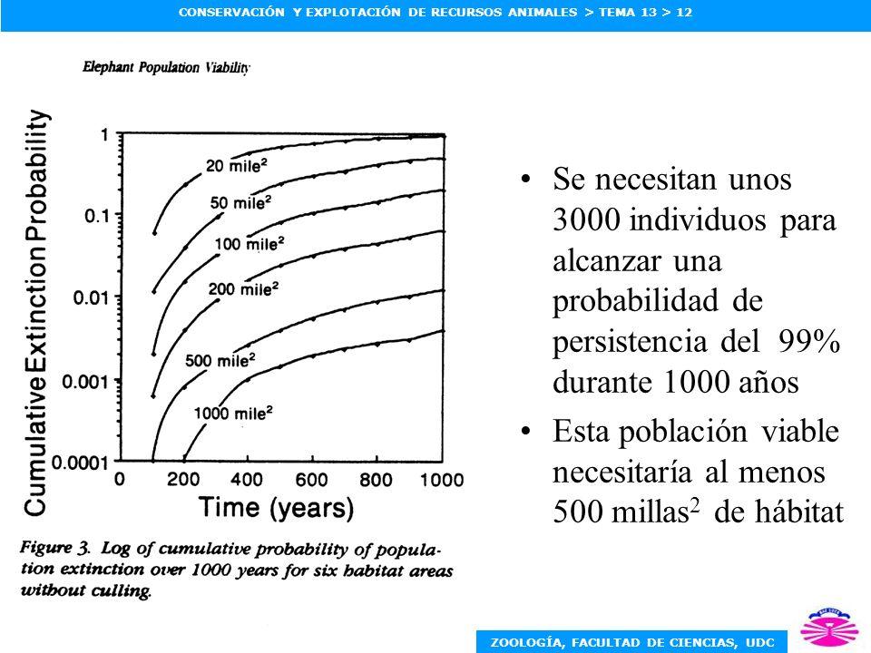 Se necesitan unos 3000 individuos para alcanzar una probabilidad de persistencia del 99% durante 1000 años