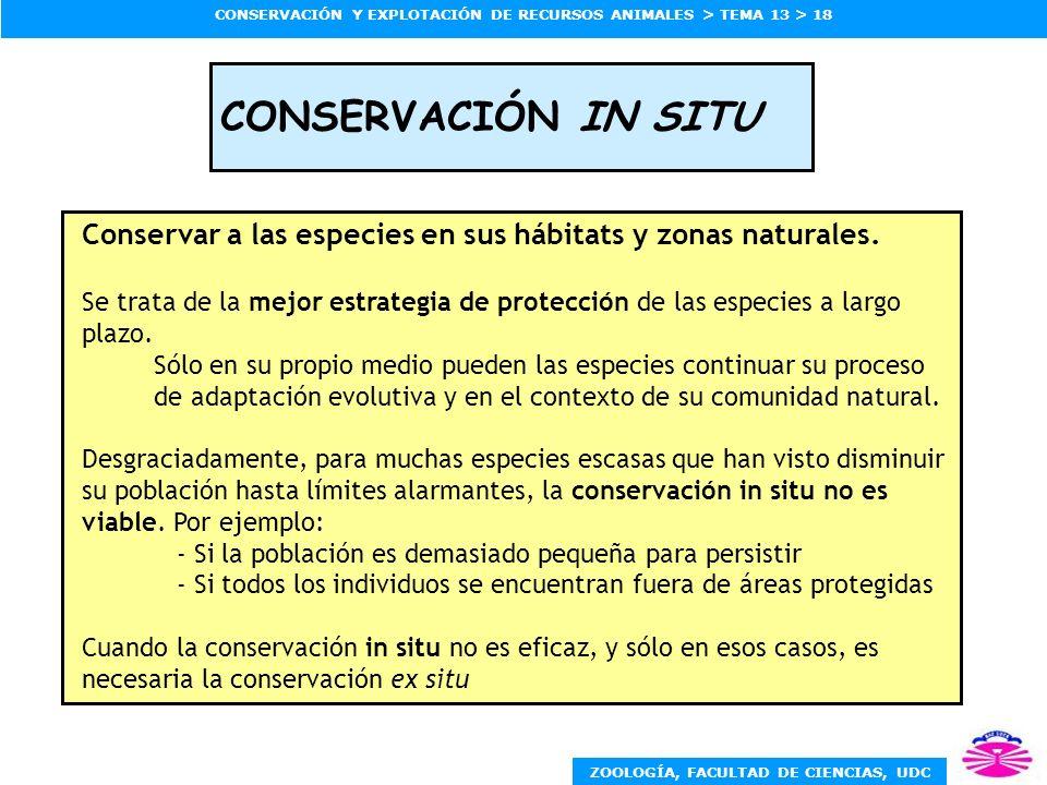 CONSERVACIÓN IN SITU Conservar a las especies en sus hábitats y zonas naturales.