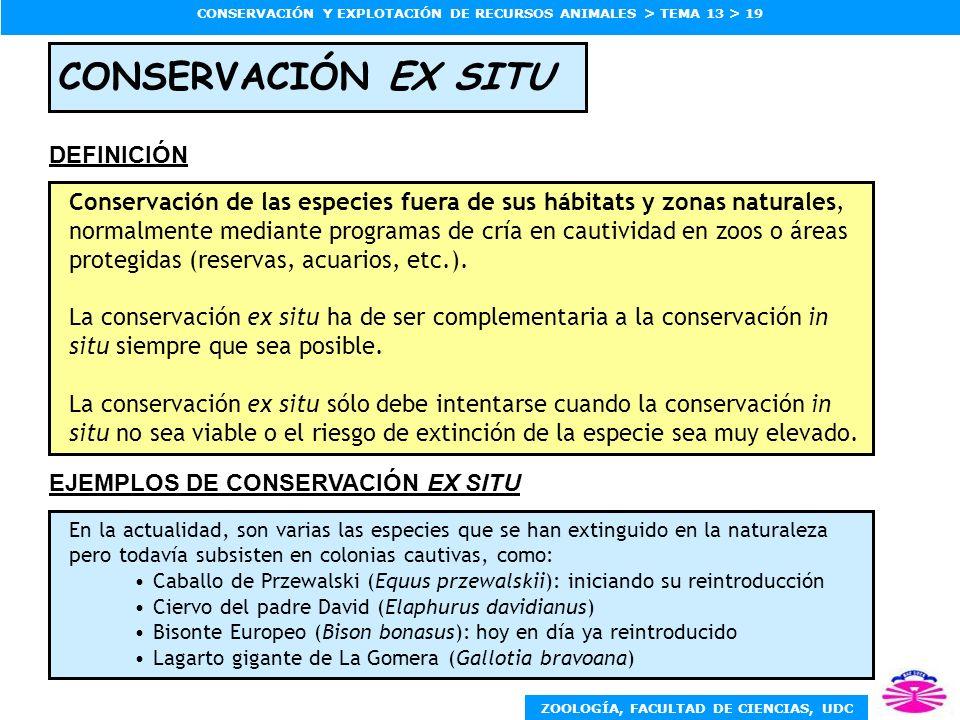 CONSERVACIÓN EX SITU DEFINICIÓN
