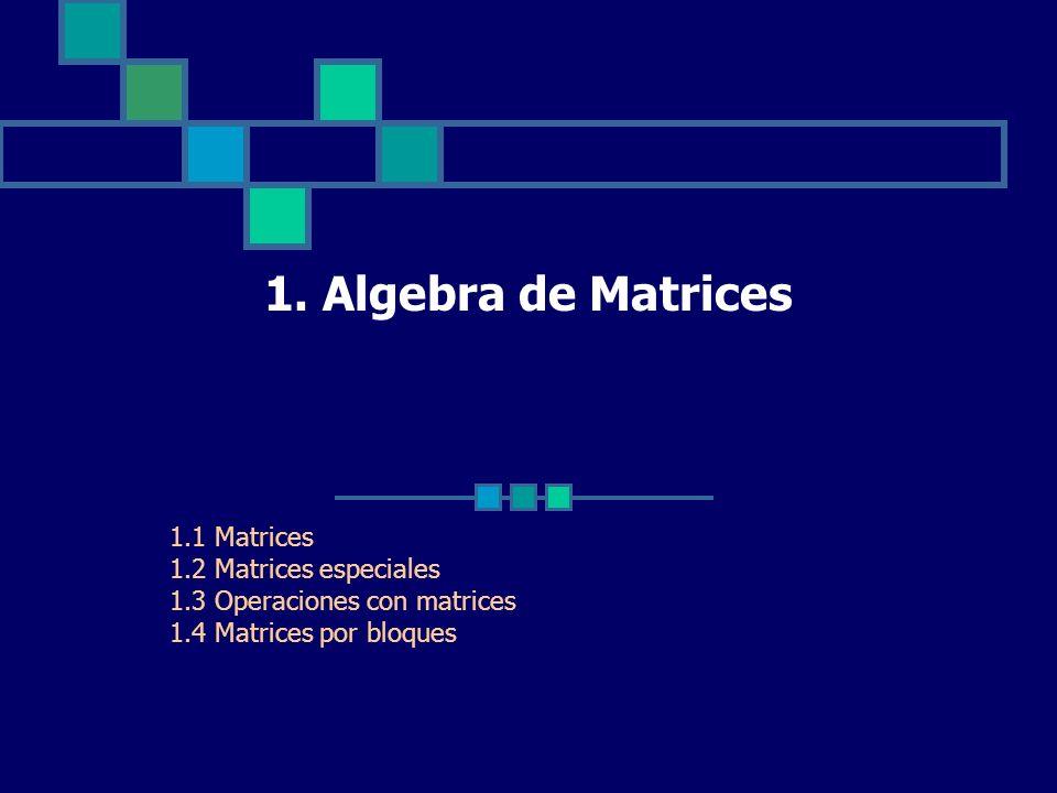 1. Algebra de Matrices 1.1 Matrices 1.2 Matrices especiales