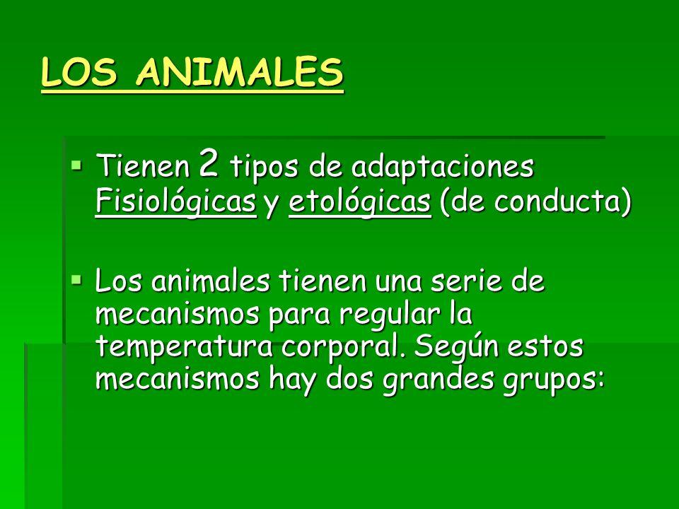 LOS ANIMALES Tienen 2 tipos de adaptaciones Fisiológicas y etológicas (de conducta)