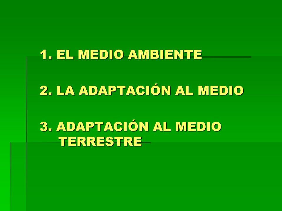 1. EL MEDIO AMBIENTE 2. LA ADAPTACIÓN AL MEDIO 3. ADAPTACIÓN AL MEDIO TERRESTRE