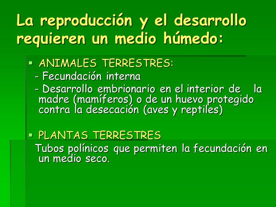 La reproducción y el desarrollo requieren un medio húmedo: