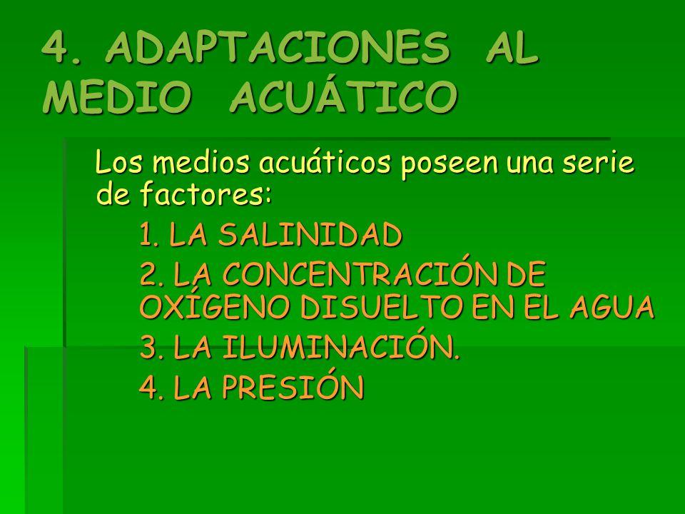 4. ADAPTACIONES AL MEDIO ACUÁTICO