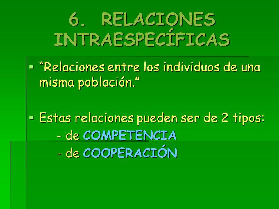 6. RELACIONES INTRAESPECÍFICAS