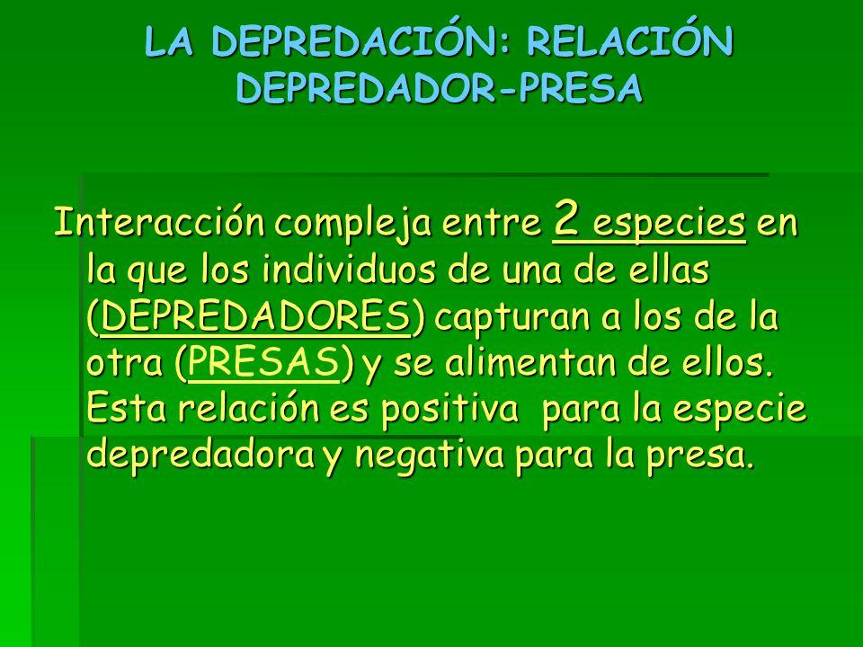 LA DEPREDACIÓN: RELACIÓN DEPREDADOR-PRESA