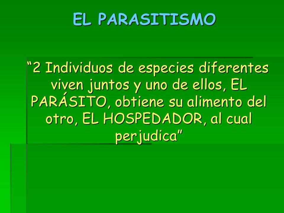 EL PARASITISMO