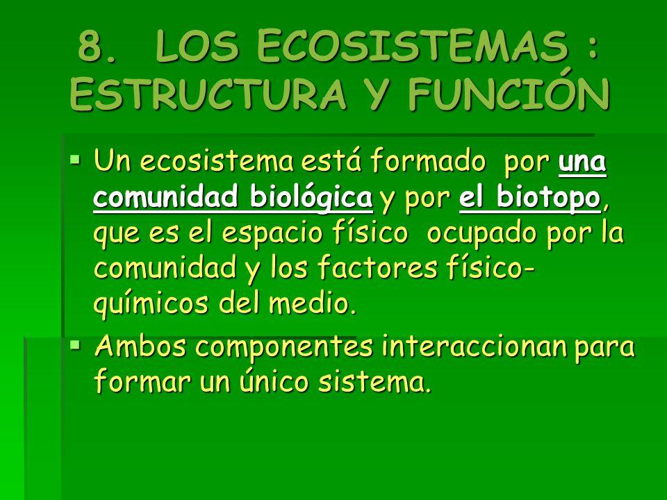 8. LOS ECOSISTEMAS : ESTRUCTURA Y FUNCIÓN