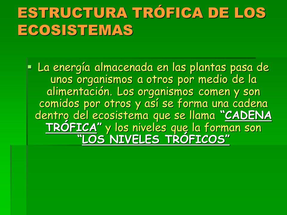 ESTRUCTURA TRÓFICA DE LOS ECOSISTEMAS