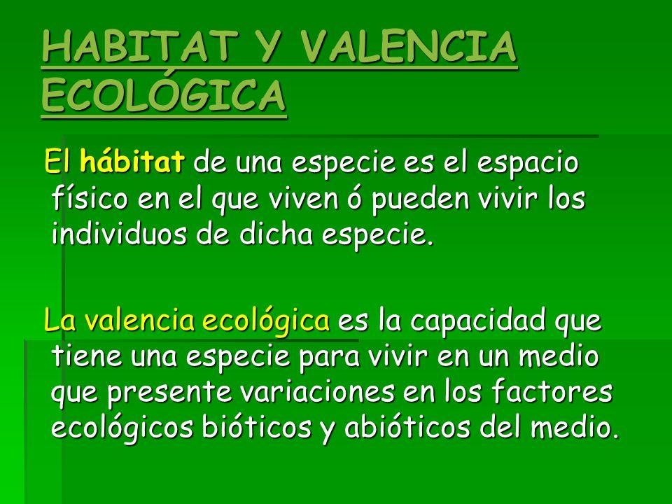 HABITAT Y VALENCIA ECOLÓGICA