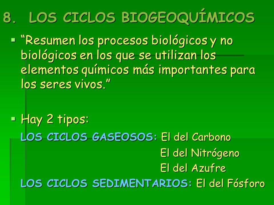 8. LOS CICLOS BIOGEOQUÍMICOS