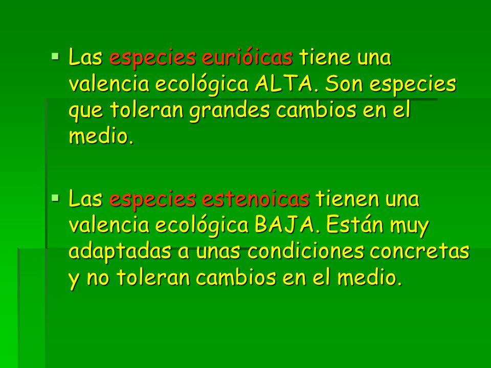 Las especies eurióicas tiene una valencia ecológica ALTA