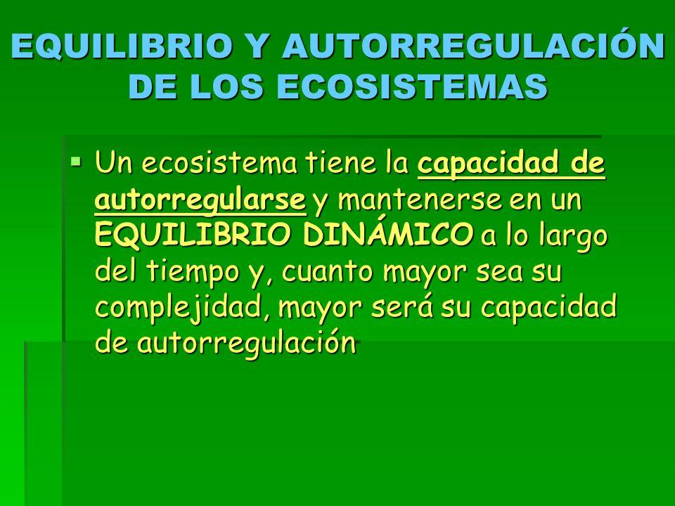 EQUILIBRIO Y AUTORREGULACIÓN DE LOS ECOSISTEMAS