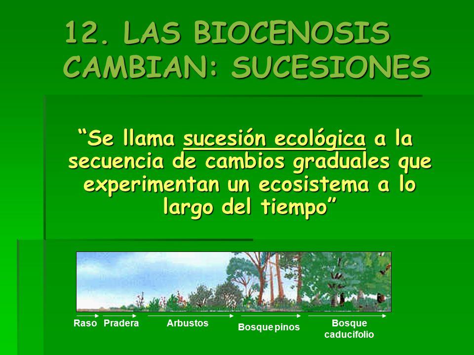 12. LAS BIOCENOSIS CAMBIAN: SUCESIONES