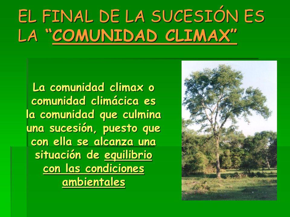 EL FINAL DE LA SUCESIÓN ES LA COMUNIDAD CLIMAX
