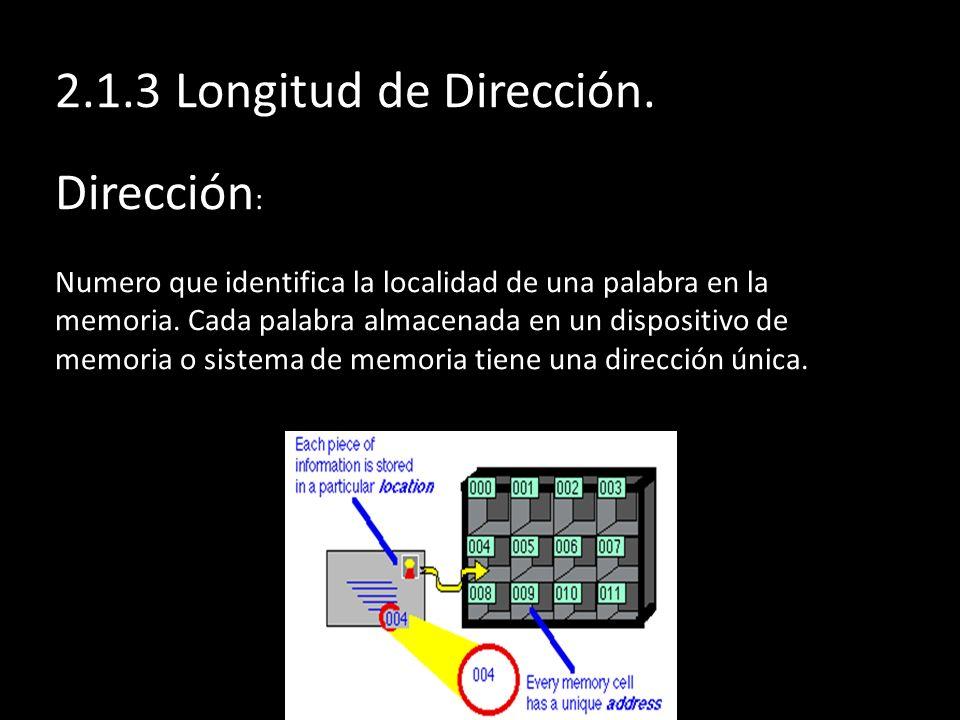 2.1.3 Longitud de Dirección.