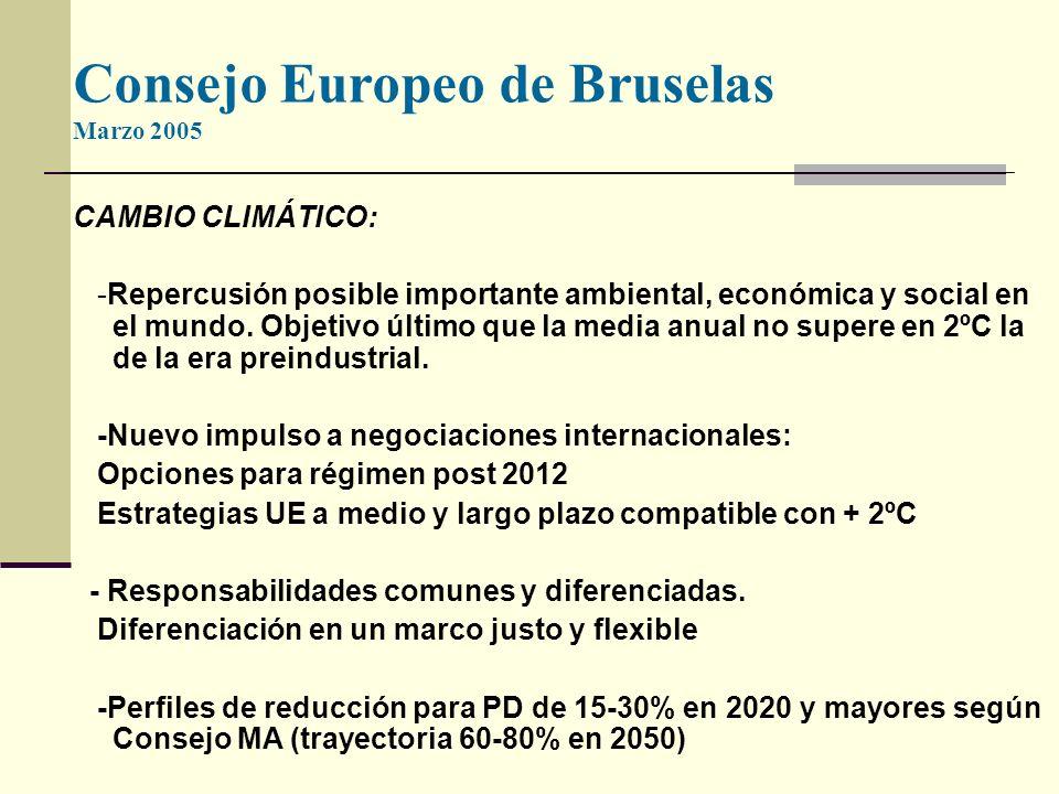 Consejo Europeo de Bruselas Marzo 2005