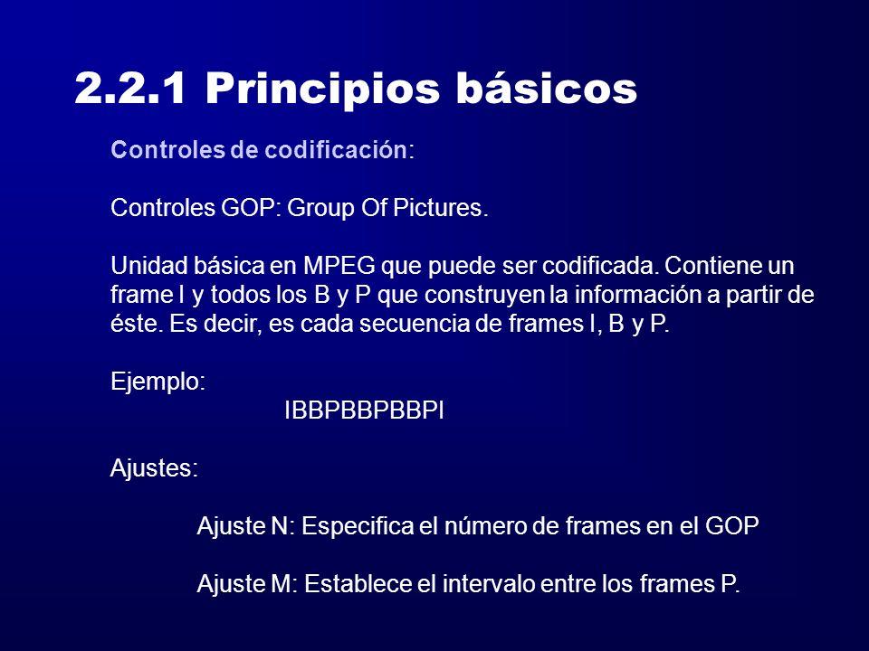 2.2.1 Principios básicos Controles de codificación: